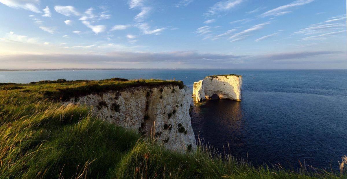 Job in Dorset